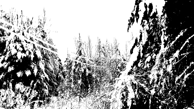 monochrome reality II bw posterized