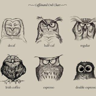 – To av hver minus koffeinfri, takk.