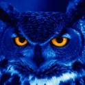 I maanelys blir alle ugler blå