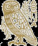 atenesugle iii gull